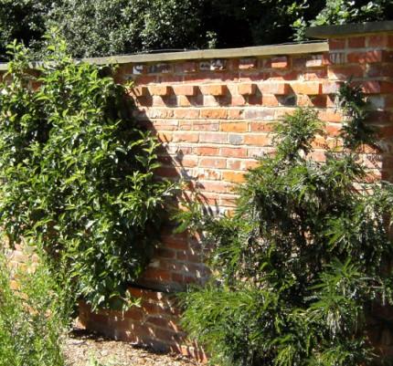 Reclaimed Bricks Dorking
