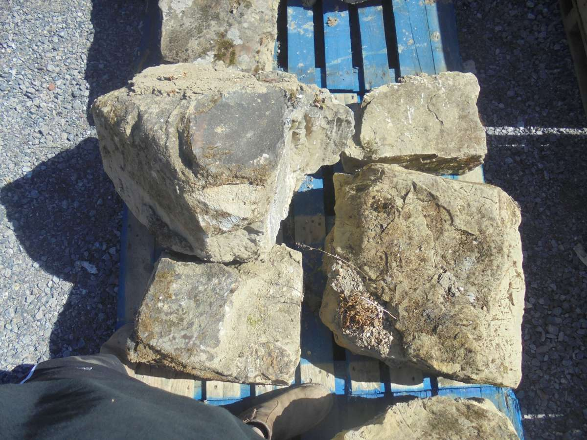 Large Reclaimed Feature Stone