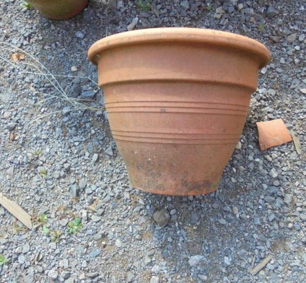 Reclaimed flower pots