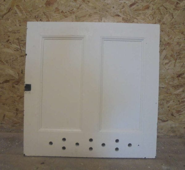 2 Panel White Painted Cupboard Door