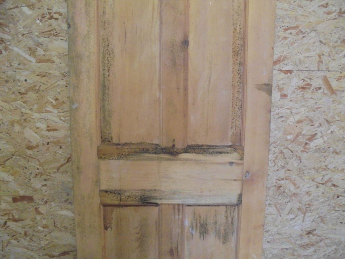 Stripped 4 Panelled Pine Door