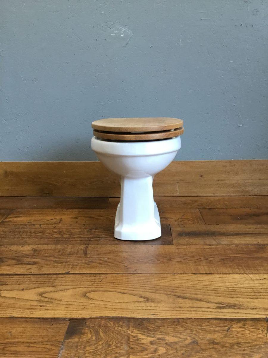 White Toilet & New Toilet Seat