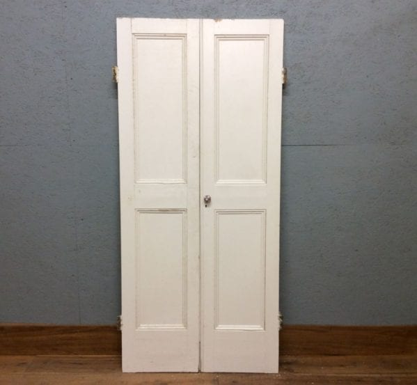 2 Panelled cupboard doors