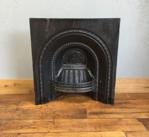 Large Fire Insert