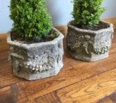 8 Sided Stone Planter & Tree Pair