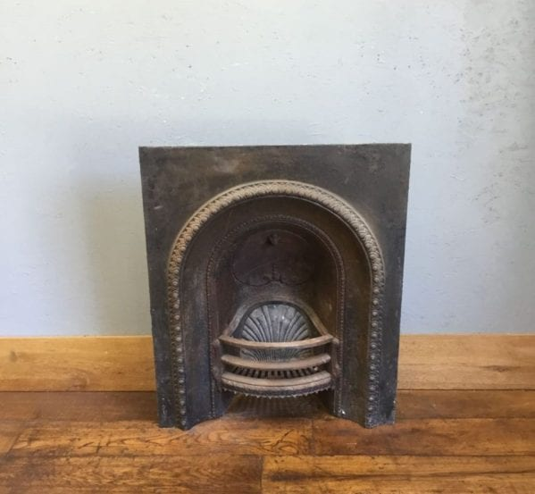 Shell Pattern Large Fire Insert