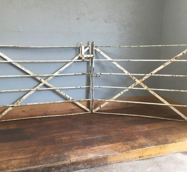 Double 10 Foot Estate Fencing Gate