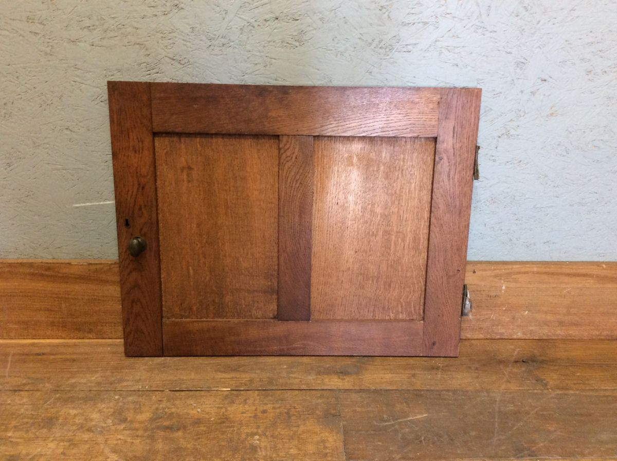 Oak 2 Panel Cupboard Door