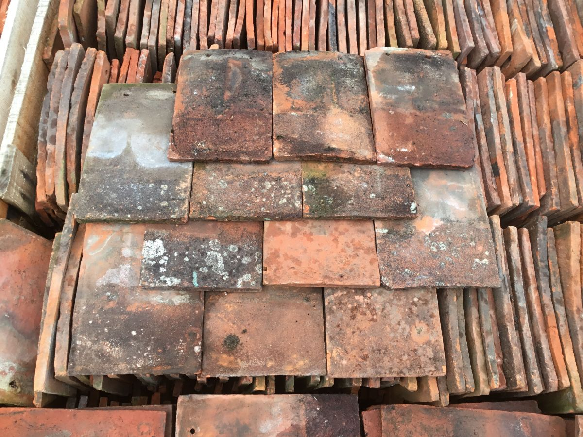 Mixed Peg Tile Batch