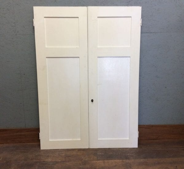 2 Panel White Cupboard Doors