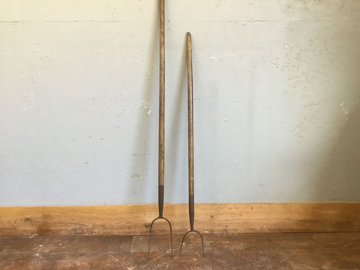 Two Prong Hay Fork