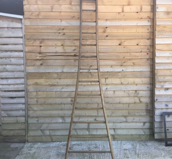 Round Rung Fruit Picking Ladder