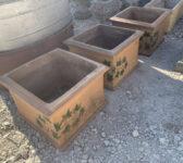 Ivy Terracotta Pots